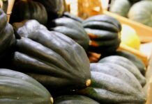 how to cook acorn squash